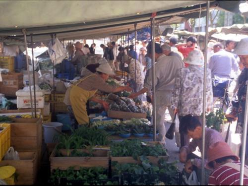 【高知日曜市】安くて新鮮な農産物や高知の特産品は日曜市で ...